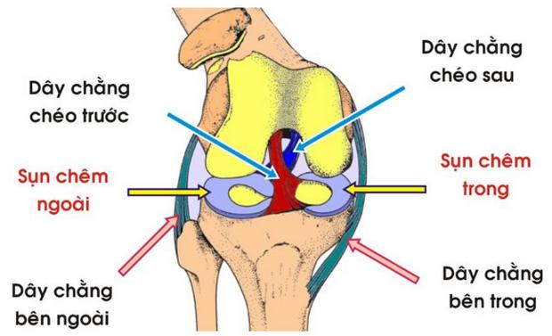 Phục hồi chức năng – tập vật lý trị liệu sau phẫu thuât dây chằng chéo sau